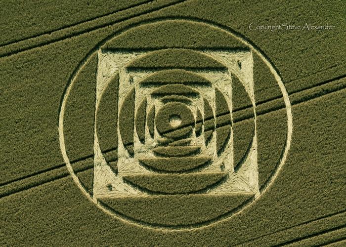 the wheat field by steve thayer essay Books by steve thayer, saint mudd, the weatherman, the wheat field, silent snow, wolf pass, the wheat field (mysteries & horror), el hombre del tiempo, mientras cae.